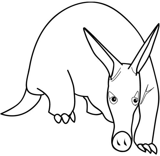 Print out animal Aardvark coloring
