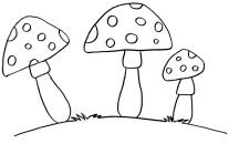 Printable Vegetable Mushrooms Coloring Pages