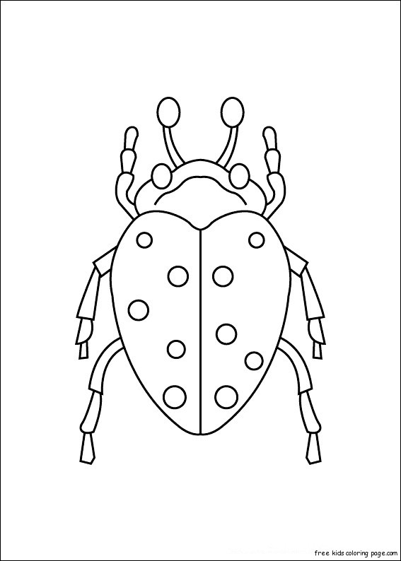 Print out insects carrion beetles