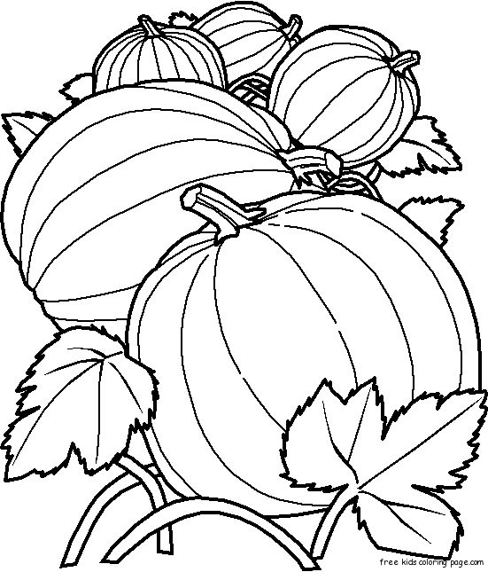 Printable pumpkin coloring pages kidsfree printable for Pumpkins coloring page