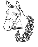 The race winner horses coloring pages free