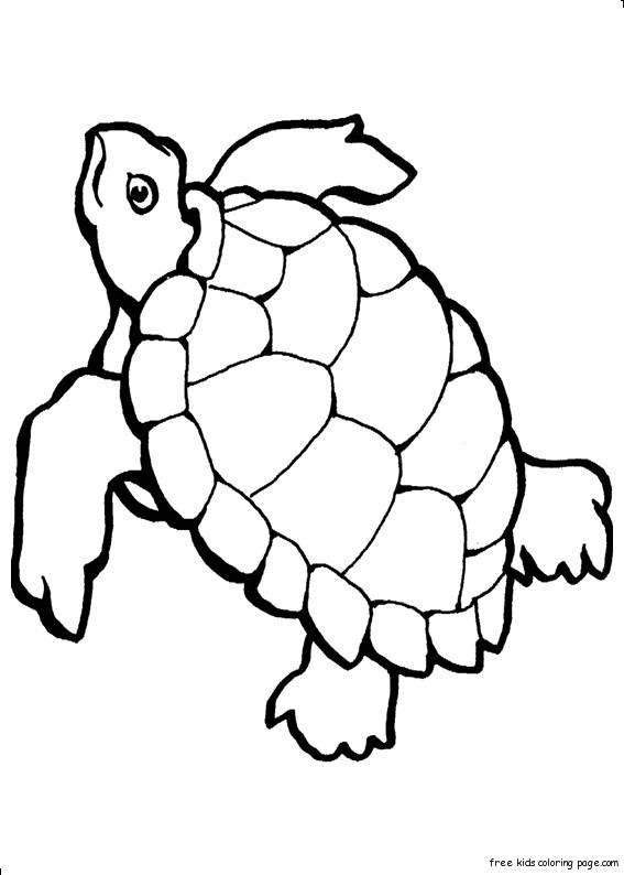 Free Coloring Pages Underwater Animals : Print out turtle ocean colouring pages for kidsfree