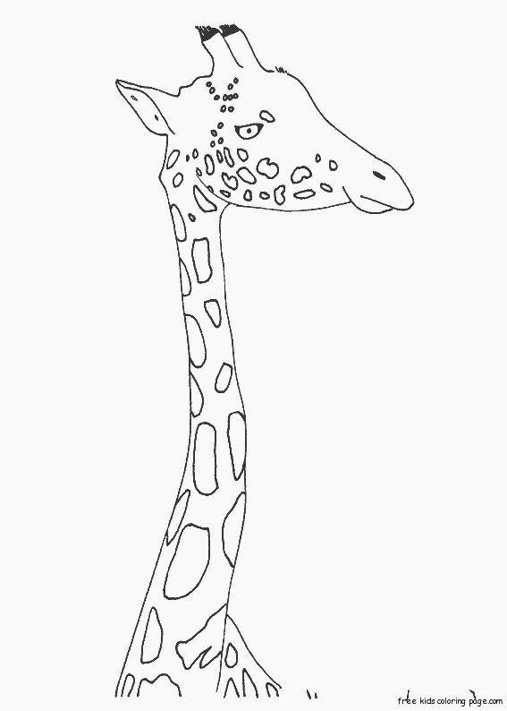 printable animal zarafa zoo coloring pages for kidsfree printable coloring pages for kids. Black Bedroom Furniture Sets. Home Design Ideas