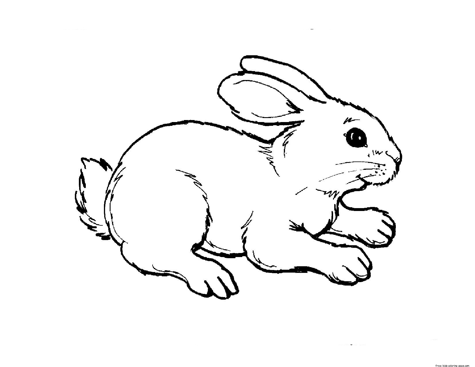 Print Out Animal Rabbit Pictures Colouring Pages For KidsFree