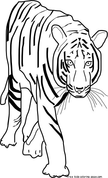 Printable Coloring Pages Bengal Tigers Free Printable