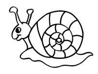 Printable coloring pages animal snails
