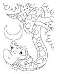 Printable King cobra snake coloring pages
