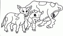 Printable cow family coloring pages
