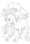 Printable farm baby donkey coloring page