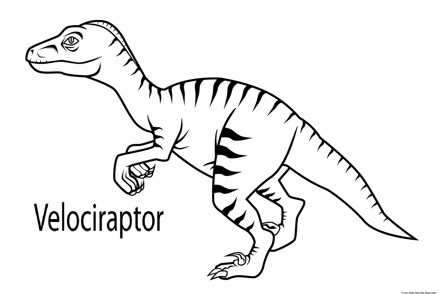 Printable Velociraptor Dinosaur Coloring Book Pages