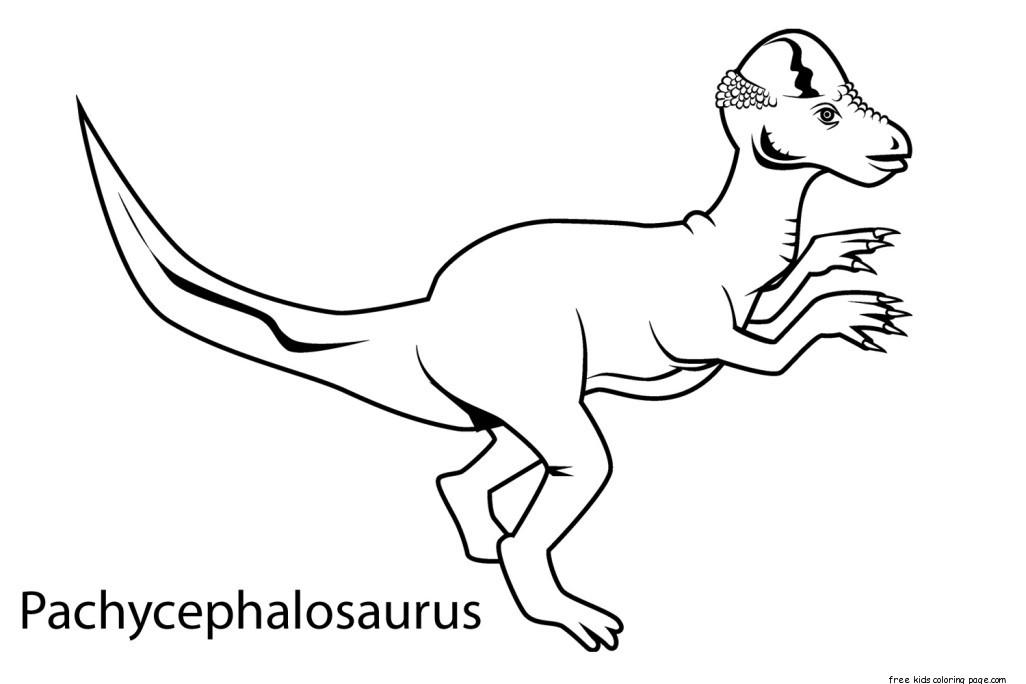 Dinosaur pachycephalosaurus coloring