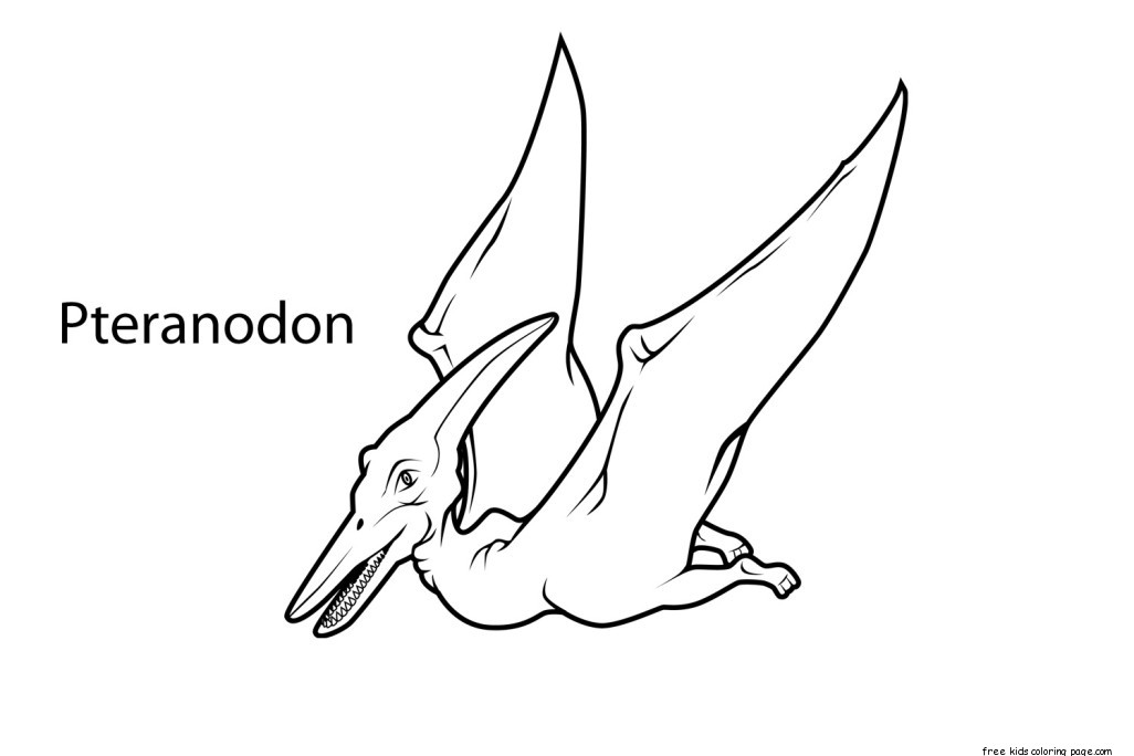 Printable pteranodon dinosaur coloring pages for kidsfree for Printable coloring pages dinosaurs